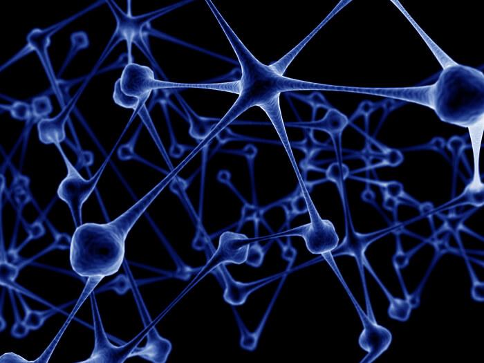 Línea de Investigación Neuronas Espejo y Terapia en Espejo
