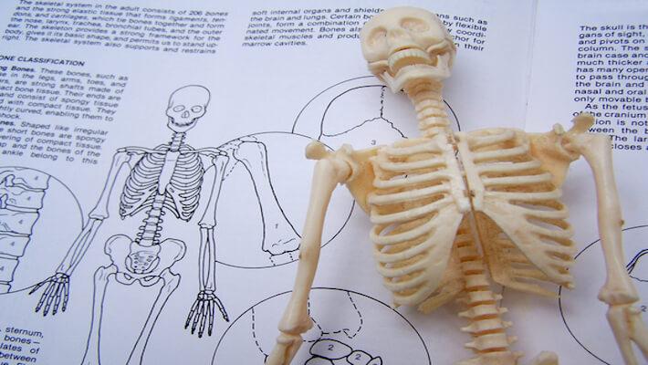 cursos de fisioterapia de 2015