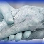 Ley de Dependencia II: tramitación de servicios y prestaciones