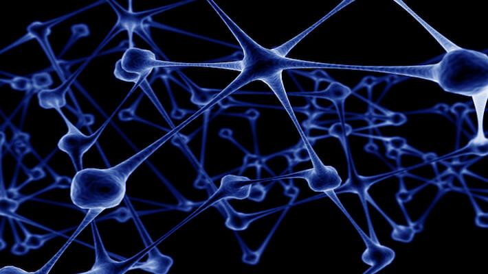 investigación de neuronas espejo